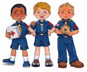 Cub Scouts Skills